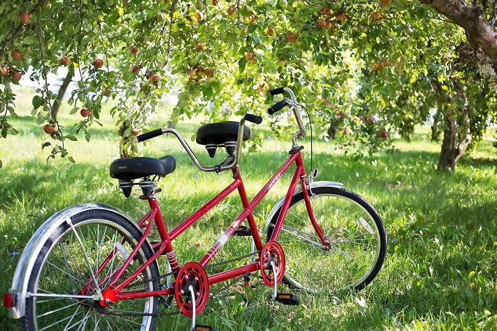 Fahrradfahren und Hitze - was gibt es zu beachten